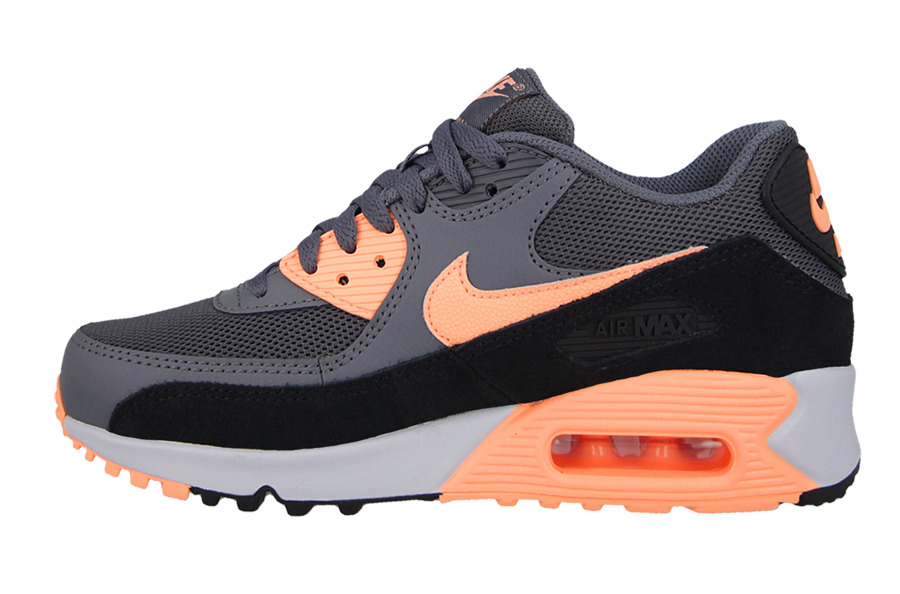WOMEN'S SHOES NIKE AIR MAX 90 ESSENTIAL 616730 021 best