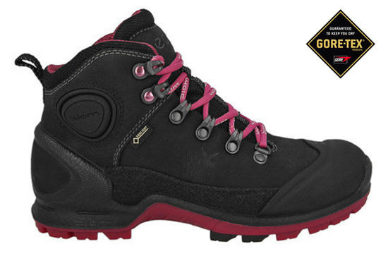 WOMEN'S SHOES ECCO BIOM TERRAIN GTX YAK  823513 57564